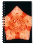 Cushion Star Spiral Notebook