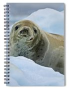 Cute And Cuddly... Spiral Notebook