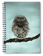 Cute Baby Owl Spiral Notebook