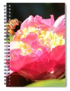 Cute Bee On Camellia Spiral Notebook
