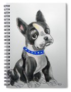 Boston Terrier Wall Art Spiral Notebook