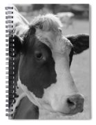 Cute Cow - Black And White Spiral Notebook