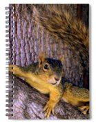 Cute Fuzzy Squirrel In Tree Near Garden Spiral Notebook