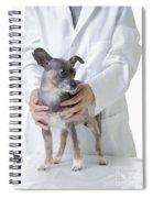 Cute Little Dog At The Vet Spiral Notebook