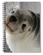 Cute Look 2 Spiral Notebook