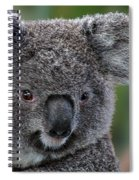 Cute Look Spiral Notebook