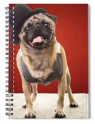 Cute Pug Dog In Vest And Top Hat Spiral Notebook