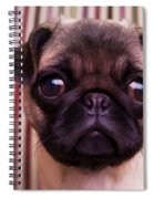 Cute Pug Puppy Spiral Notebook