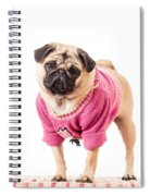 Cute Pug Wearing Sweater Spiral Notebook