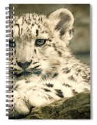 Cute Snow Cub Spiral Notebook