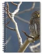 Who Are You?  Hoot Hoot Hoot Hoot Spiral Notebook