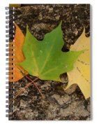 Cycle Spiral Notebook