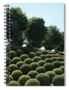 Cypress And Boxwood Garden Spiral Notebook