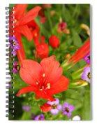 Cypress And Sweet Alyssum Spiral Notebook