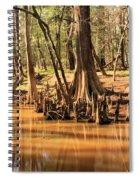Cypress Arch Spiral Notebook