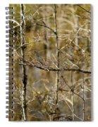 Cypress Branches Spiral Notebook