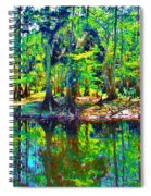 Cypress Coast Spiral Notebook
