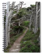 Cypress Grove Trail Spiral Notebook