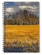 Cypress Marsh Spiral Notebook