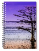 Cypress Purple Sky 2 Spiral Notebook