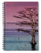 Cypress Purple Sky Spiral Notebook