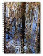 Cypress Reflection Nature Abstract Spiral Notebook