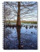 Cypress Reflections Spiral Notebook