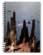 Cypress Roots Spiral Notebook