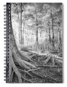 Cypress Roots In Big Cypress Spiral Notebook