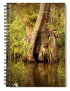 Cypress  Spiral Notebook