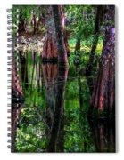 Cypress Secrets Spiral Notebook