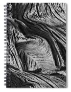 Cypress Tree Abstract Spiral Notebook