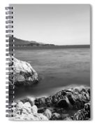 Cypress Tree At The Coast, The Lone Spiral Notebook