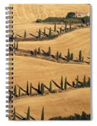 Cypress Tree Lined Road Spiral Notebook