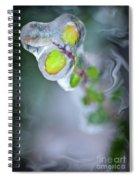 D E F R O S T Spiral Notebook