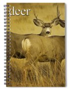 D Is For Deer Spiral Notebook