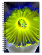 Daffodil Dreams - Photopower 1904 Spiral Notebook