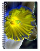 Daffodil Dreams - Photopower 1907 Spiral Notebook