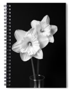 Daffodil Flowers Black And White Spiral Notebook