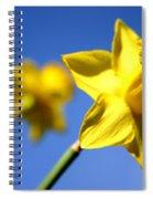 Daffodil Line Spiral Notebook