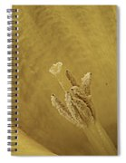 Daffodil Macro Spiral Notebook