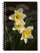 Daffs Spiral Notebook