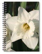 Dafodil171 Spiral Notebook