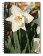 Dafodil217 Spiral Notebook