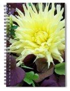 Dahlia And Potato Vine  Spiral Notebook