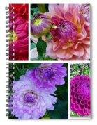 Dahlia Best Collage Spiral Notebook