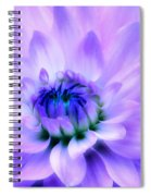 Dahlia Dream Spiral Notebook