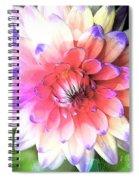 Dahlia Effect Spiral Notebook