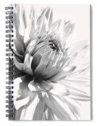 Dahlia Flower In Monochrome Spiral Notebook