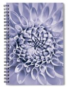 Dahlia Flower Star Burst Purple Spiral Notebook
